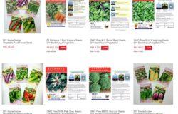 Beli biji benih tumbuhan sayuran secara online
