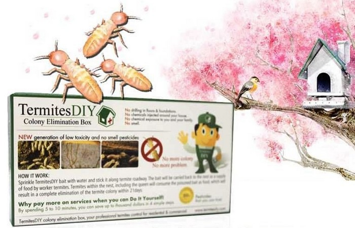 Termite DIY produk bunuh anai anai