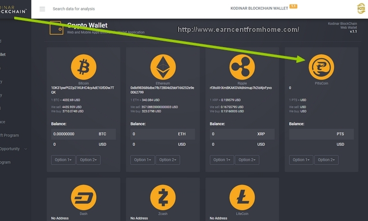 eWallet Pitis Coin dari Kodinar Blockchain