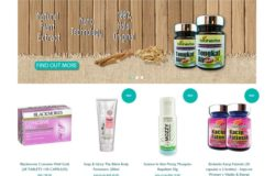 Contoh sebenar kedai online yang menggunakan sistem eCommerce store murah dari Easystore